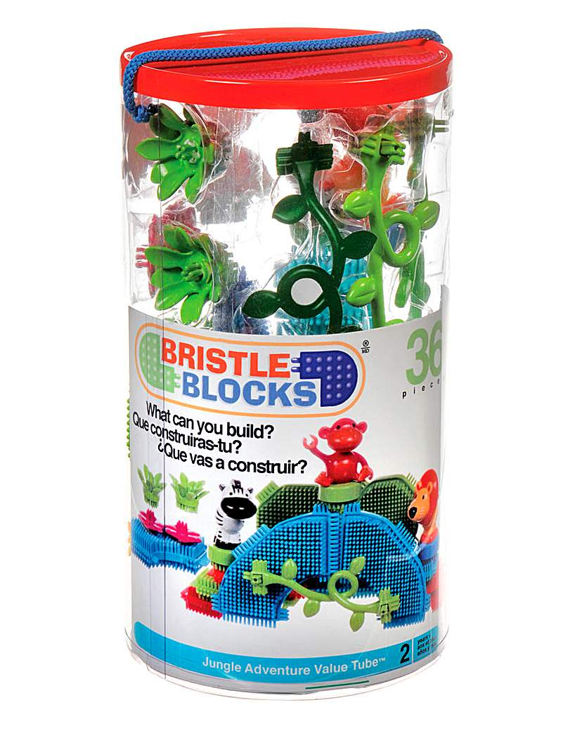 Image of Bristle Blocks Tube - 36pc