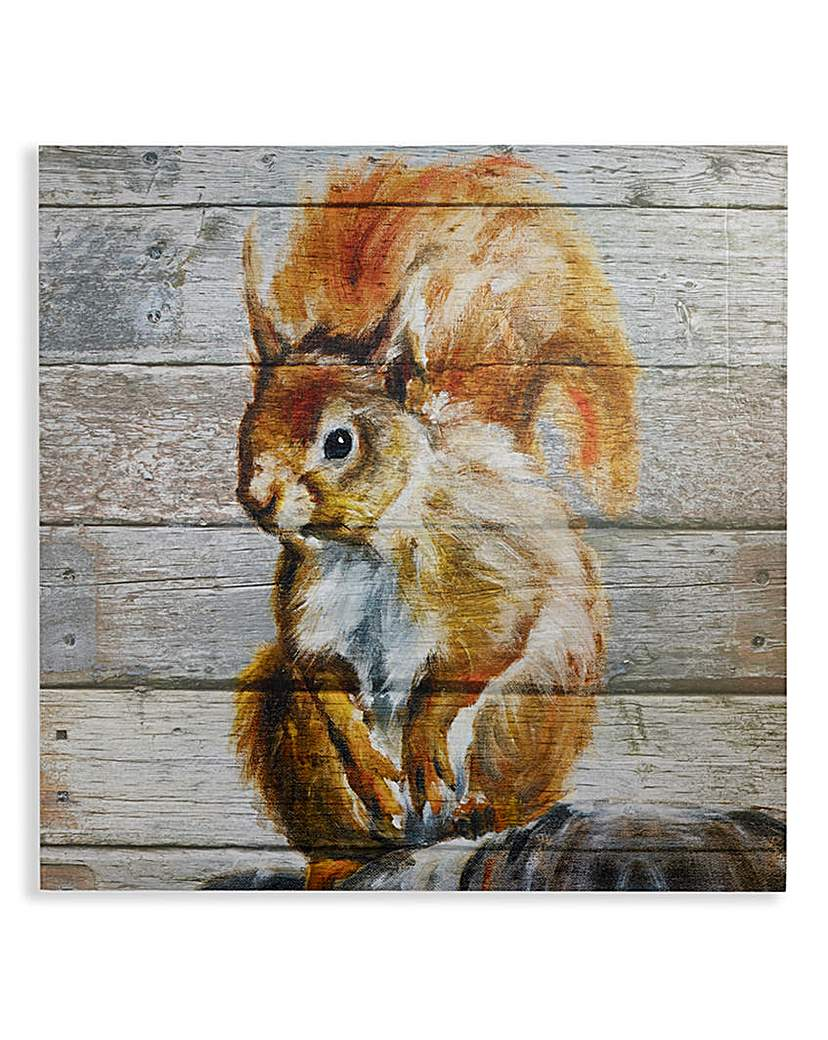 Red Squirrel Printed Wooden Plaque