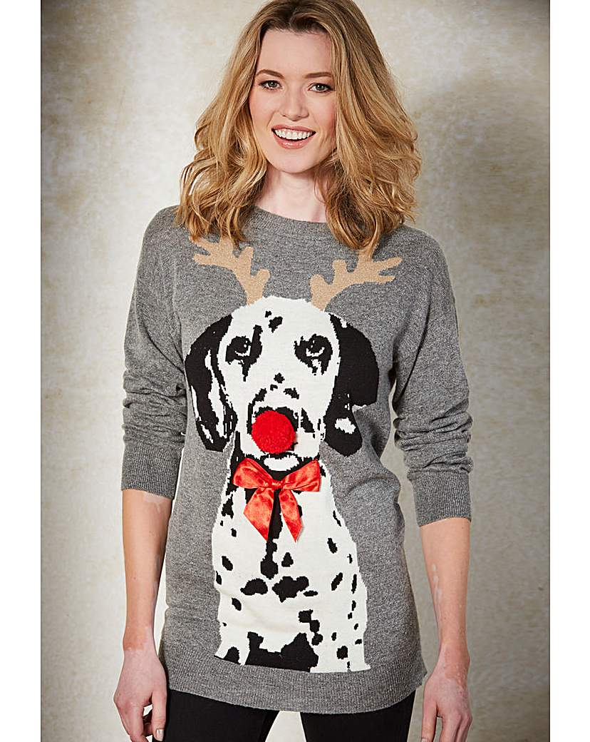 Product photo of Christmas dog jumper