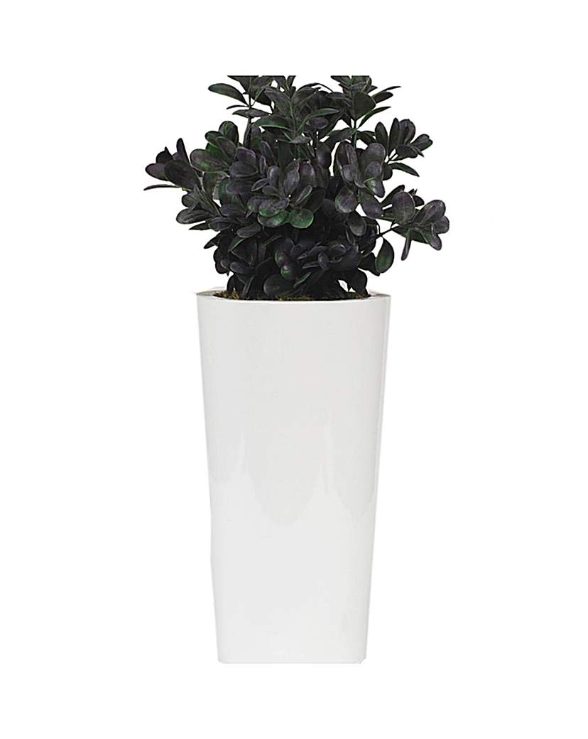 Artificial Plant Potted Boxwood