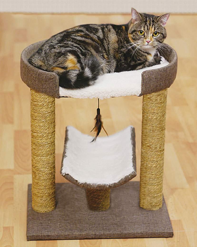 Saffron Cat Scratcher