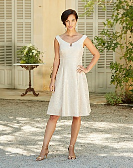 Joanna Hope Foil Dress