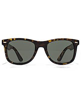 American Freshman Retro Sunglasses