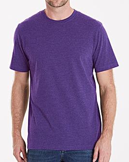 Capsule Crew Neck T-shirt Regular