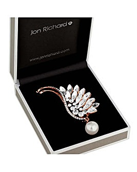 Jon Richard crystal wing brooch