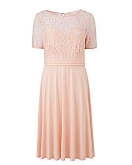 ITY Lace Bodice Skater Dress