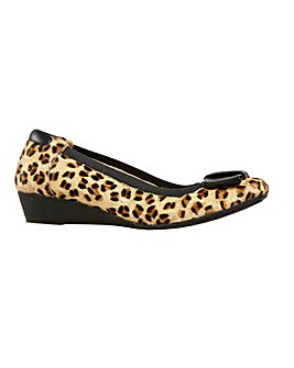 Van Dal Jericho  Cheetah / Black Shoe
