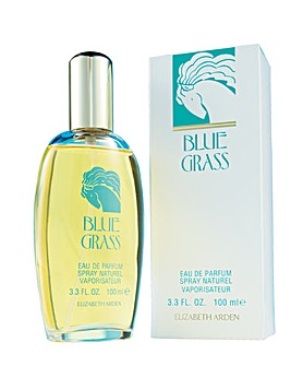 Elizabeth Arden Blue Grass 100ml