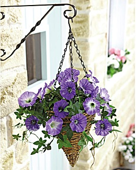 Petunia Hanging Basket Set of 2