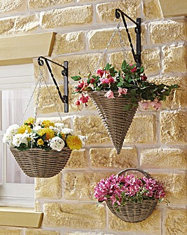 Hanging Basket 14 Inch