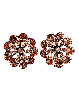 Lizzie Lee Diamante Flower Earring
