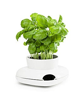 Sagaform Herb Pot Small