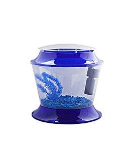 Fish R Fun Blue Childrens