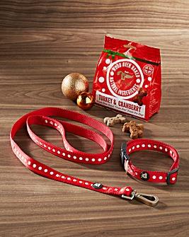 Christmas Walkies Kit