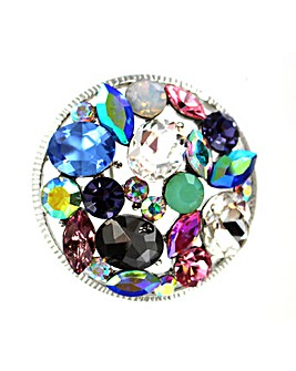 Lizzie Lee Colourful Brooch