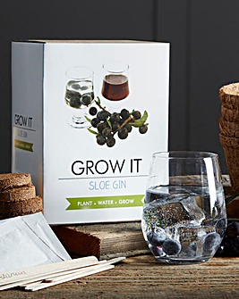 Grow Your Own Sloe Gin