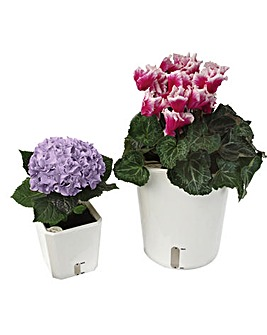 Self Watering Plant Pot Set of 2