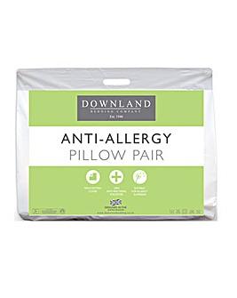 Anti Allergy Hollowfibre Pillows
