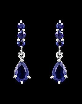 9ct White Gold Blue Sapphire Earrings