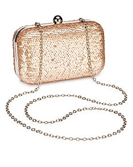Alice Champagne Sequin Clutch Bag