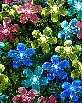 Set of 60 Solar LED Flower String Lights