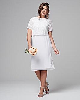 Joanna Hope Beaded Overlay Dress
