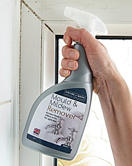 Mould and Mildew Remover 500ML