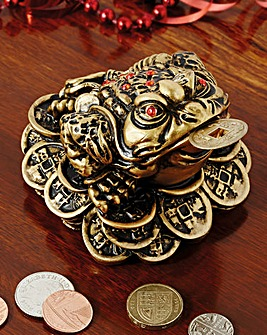 Chinese Money Toad