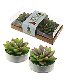 Set 2 Succulent Tea Light Candles