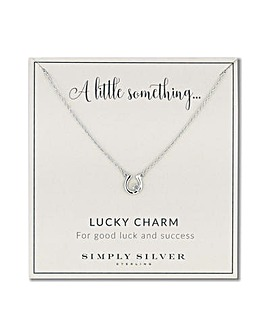 Simply Silver lucky horseshoe necklace