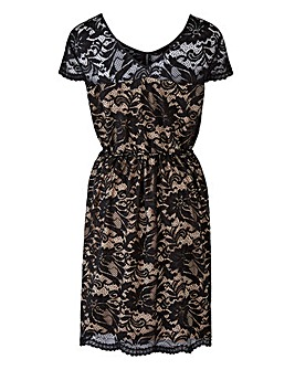 Grazia Contrast Lace Cap Sleeve Dress