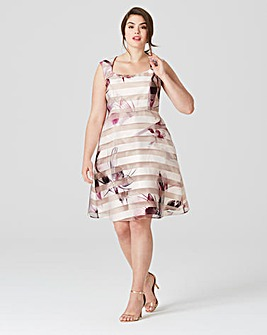 Studio 8 Megan Dress