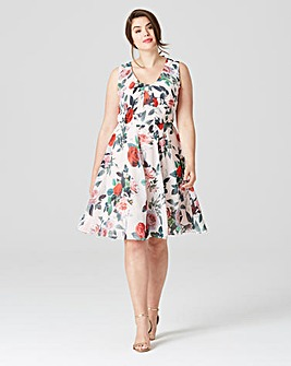 Studio 8 by Phase Eight Amily Dress