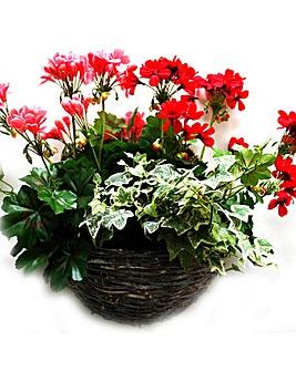 Artificial Plant Geranium Wall Basket