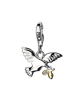 Peace & Dove Charm