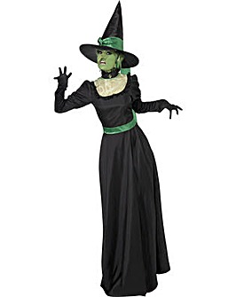Halloween Wicked Witch Costume