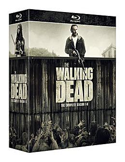 The Walking Dead Seasons 1 to 6
