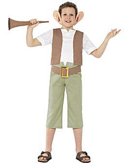 Roald Dahl - BFG Costume