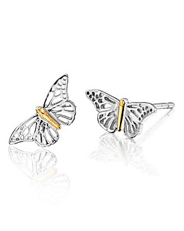 Clogau Butterfly Stud Earrings
