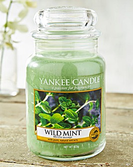 Yankee Candle Wild Mint Large Jar