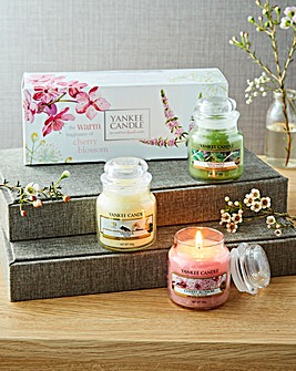 Yankee Candle Pure Essence Small Jar Set