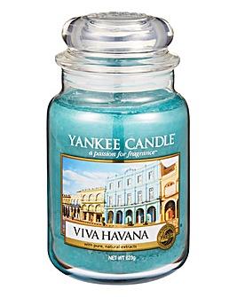 Yankee Candle Viva Havana Large Jar