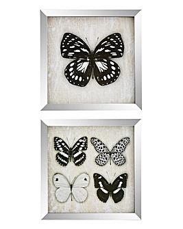 Mirror Framed Set of 2 Butterfly Prints