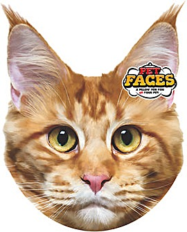Pet Face Cushions Mainecoon