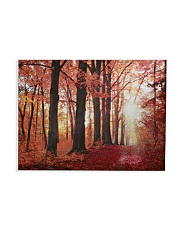Arthouse New Forest Canvas