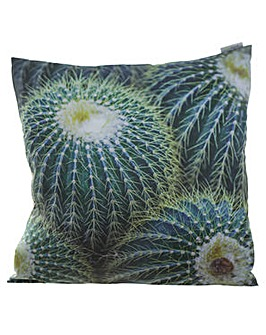 Decorative Prickly Cactus Cushion