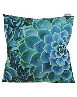 Decorative Succulent Cactus Cushion