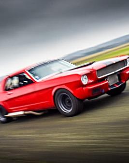 Mustang Blast�