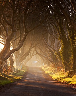 Game Of Thrones Tour For Two