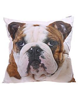 Decorative Bulldog Cushion